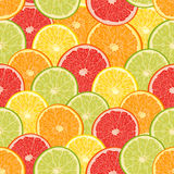Fresh colorful citrus fruits seamless pattern Stock Photos