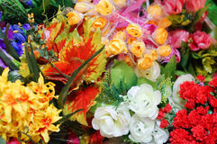 Fresh colorful flowers of spring Stock Photos