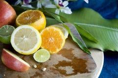 Fresh colorful fruits stock photos