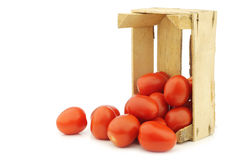 Fresh and colorful italian roma tomatoes Royalty Free Stock Photography
