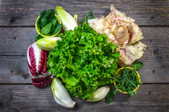Fresh colorful  lettuce Stock Photo