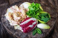 Fresh colorful  lettuce Royalty Free Stock Photo