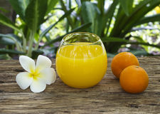 Fresh and colorful orange juice in spa healthy club Royalty Free Stock Images