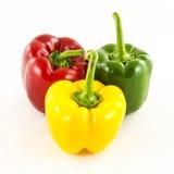 Fresh colorful paprika on white. Beautiful fresh paprika on white royalty free stock image