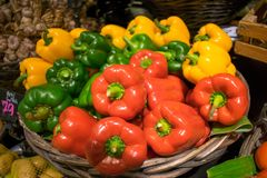Fresh colorful sweet peppers basket Royalty Free Stock Photo