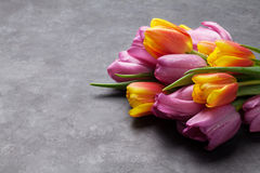 Fresh colorful tulip flowers. On dark stone table. View with copy space Royalty Free Stock Photo
