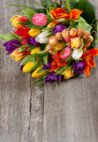 Fresh colorful tulips over wooden background Stock Image