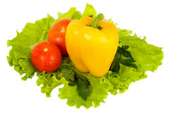 Fresh colorful vegetables Royalty Free Stock Photos