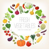 Circle of colorful vegetables Royalty Free Stock Images