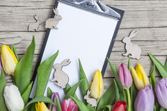 Fresh coloured tulips in front a wooden background with Easter bunnies Stock Photos