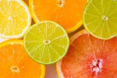 Fresh colourful juicy citrus fruit slices. Assorted sliced colourful citrus fruits stock image