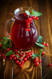 Fresh Compote Of Ripe Red Currant Royalty Free Stock Image