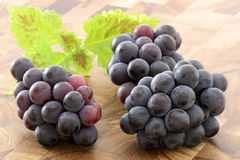 Fresh concord  grapes Stock Photos