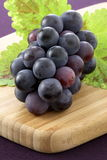 Fresh concord grapes. Fresh delicious and healthy organic concord grapes on fine wood cutting board stock images