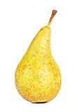 Fresh Conference Pear Stock Photography
