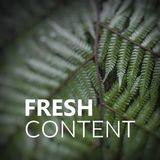 Fresh Content. Close up of fern leaves. Nature texture backgroun Stock Photo