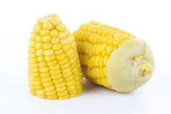 Fresh cook corn Stock Image