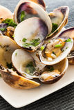 Cooked clams Stock Images