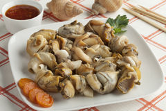 Fresh cooked common whelks Royalty Free Stock Photos