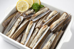 Fresh cooked razor shells Stock Photography