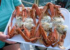 Fresh Cooked Seafood. Blue Swimmer Crabs Stock Image