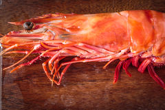 Fresh cooked shrimp Royalty Free Stock Photography