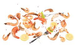 Fresh cooked shrimps composition with fork. Stock Photo
