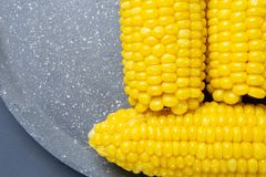 Fresh cooked yellow corn cobs lie on a gray dish stock photography