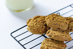 Fresh cookies on a cooling rack Royalty Free Stock Images