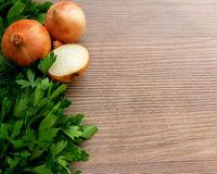 Fresh cooking ingredients with onions and fresh herbs on a woode. Cooking ingredients (onions and herbs) on wooden background Royalty Free Stock Photo