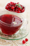 Fresh cool drink cranberry. Fresh cranberries and a cool drink cranberry royalty free stock photo