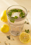 Fresh and cooling lemonade with mint Stock Images