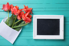Fresh coral tulips in white envelope and empty blackboard for te Stock Photo