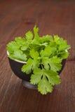 Fresh coriander in black bowl. stock photography