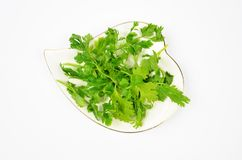 Fresh Coriander Leaves on White Plate stock images