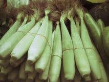 Fresh corn Royalty Free Stock Photography