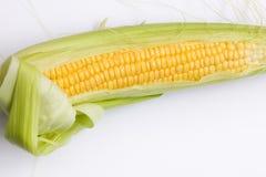Fresh corn cob. On white background Royalty Free Stock Images