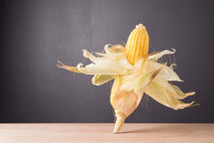 Fresh corn on cob on rustic wooden table, closeup. Fresh corn on cob on wooden table dark background, closeup, Ear of corn royalty free stock photography