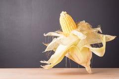 Fresh corn on cob on rustic wooden table, closeup. Fresh corn on cob on wooden table dark background, closeup, Ear of corn royalty free stock photo
