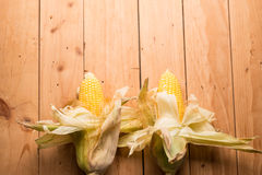 Fresh corn on cob on rustic wooden table, closeup. Ear of corn stock images