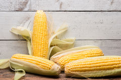 Fresh corn on cob on rustic wooden table, closeup Royalty Free Stock Image