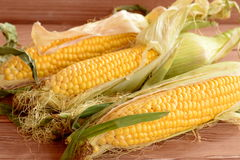 Fresh corn on the cob on a wooden table. Raw organic vegetables. Closeup Royalty Free Stock Images