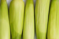 Fresh corn cobs. Heap of fresh corn cobs Stock Photo