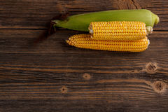 Fresh corn cobs Stock Photos