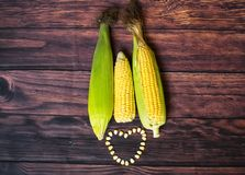 Fresh corn on cobs on wooden table, closeup, top view. Fresh corn on cobs on wooden table, closeup, top view Royalty Free Stock Image