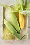 Fresh Corn Royalty Free Stock Photo