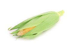 Fresh corn in cop. Stock Photo