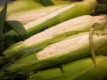 Fresh corn from Dc market stock images