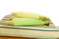Fresh Corn ear Stock Photo