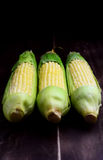 Fresh corn ears Stock Photo